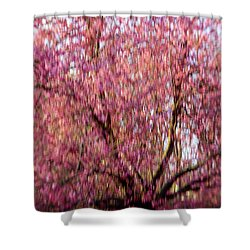 Columnar Sargent Cherry 2 Shower Curtain