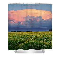 Cumulus And Canola Shower Curtain