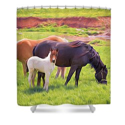 Curious Colt And Mares Shower Curtain