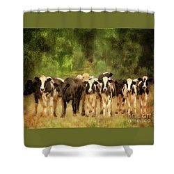 Shower Curtain featuring the digital art Curious Cows by Lois Bryan