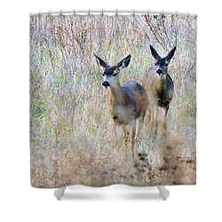Curious Duo Shower Curtain