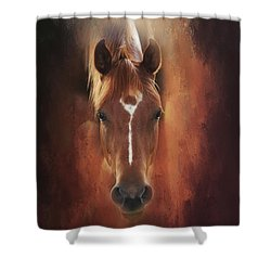 Shower Curtain featuring the photograph Curious Gaze  by Toni Hopper