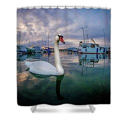 Shower Curtain featuring the photograph Curious by Okan YILMAZ