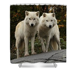 Curious Pair Shower Curtain by Heather King