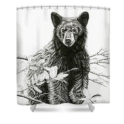 Curious Young Bear Shower Curtain