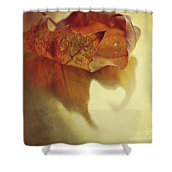 Curled Autumn Leaf Shower Curtain by Lyn Randle