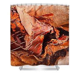 Curled Bark Shower Curtain by Tara Turner