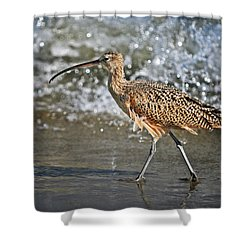 Curlew And Tides Shower Curtain