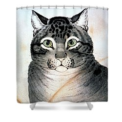 Currier And Ives Cat Shower Curtain by Granger