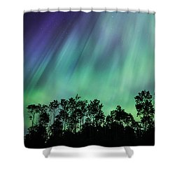 Curtain Of Lights Shower Curtain