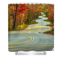 Curvaceous Shower Curtain by Bill Pevlor