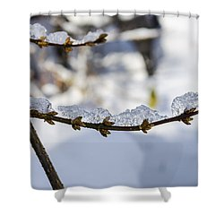 Curved Clumps Of Ice Shower Curtain