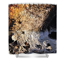 Curves And Colors In Nature Shower Curtain by Todd A Blanchard