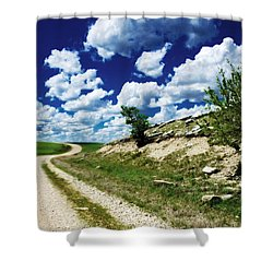 Curving Gravel Road Shower Curtain