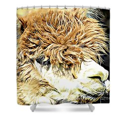 Soft And Shaggy Shower Curtain by Kathy M Krause