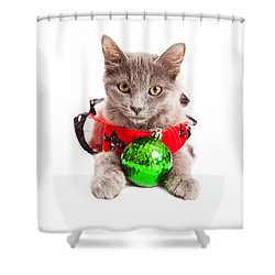 Cute Christmas Kitten Looking Into Camera Shower Curtain