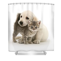 Cute Kitten And Perfect Puppy Shower Curtain