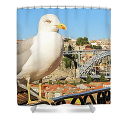 Cute Seagull And Porto's Cityscape Shower Curtain