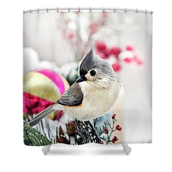 Cute Winter Bird - Tufted Titmouse Shower Curtain by Christina Rollo