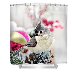 Cute Winter Bird - Tufted Titmouse Shower Curtain