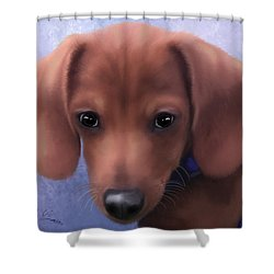 Cuteness Overload Shower Curtain