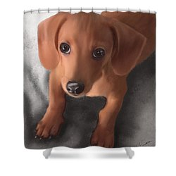 Cutest Pup Ever Shower Curtain