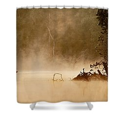 Cutting Through The Mist Shower Curtain by Robert Charity