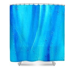 Cy Lantyca 30 Shower Curtain