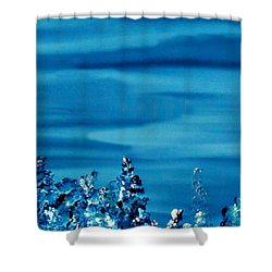 Cy Lantyca 33 Shower Curtain