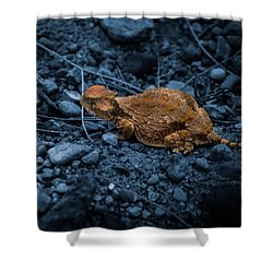 Shower Curtain featuring the digital art Cyanotype Horned Toad by Bartz Johnson