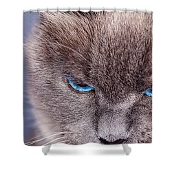 Cybil Shower Curtain