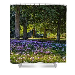 Cyclamen Under Trees Shower Curtain