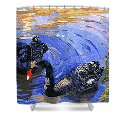 Cygnus Atratus Shower Curtain