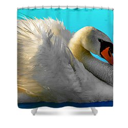 Shower Curtain featuring the photograph Cygnus Shine 2 by Brian Stevens