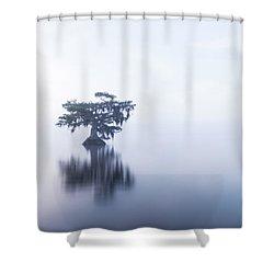 Cypress In Heavy Fog Shower Curtain
