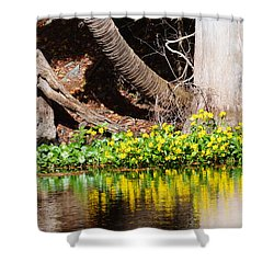 Cypress And Flower Reflections Shower Curtain by Warren Thompson