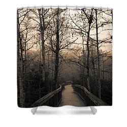Cypress Boardwalk Shower Curtain