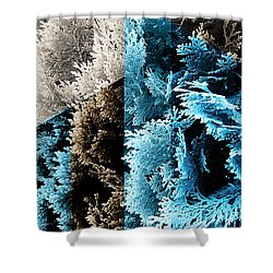 Cypress Branches No.3 Shower Curtain