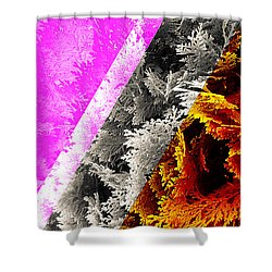 Cypress Branches No.4 Shower Curtain