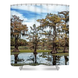 Cypress Expression  Shower Curtain