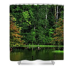 Cypress Frame Shower Curtain
