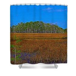 Cypress Hammock Shower Curtain