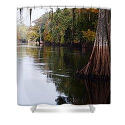 Cypress High Water Mark Shower Curtain by Warren Thompson