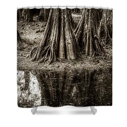 Cypress Island Shower Curtain