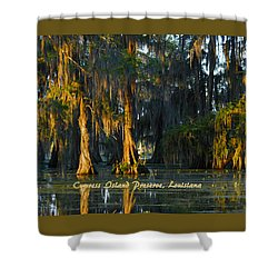Cypress Island Gator Shower Curtain by Kimo Fernandez