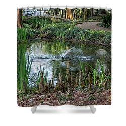 Shower Curtain featuring the photograph Cypress Knees 02 by Gregory Daley  PPSA