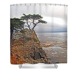 Cypress Tree At Pebble Beach Shower Curtain
