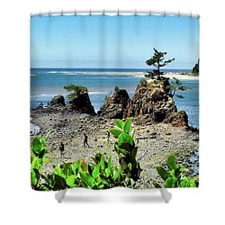 Cypress Tree On Rocky Promontory Shower Curtain