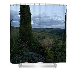 Cypress Trees Growing In The Rolling Shower Curtain by Todd Gipstein