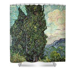 Cypresses Shower Curtain by Vincent Van Gogh
